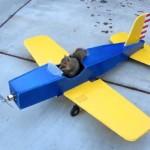 ラジコン飛行機をリスがハイジャック。